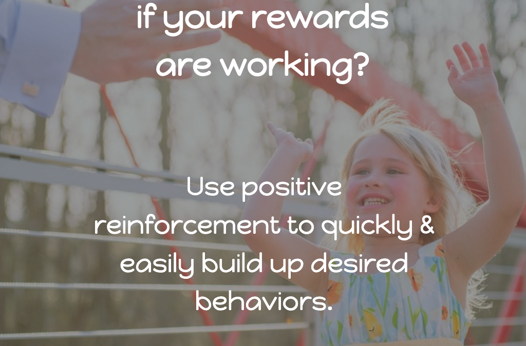 How can you tell if your rewards are working?